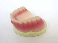 4.人工の歯を並べて仮装着